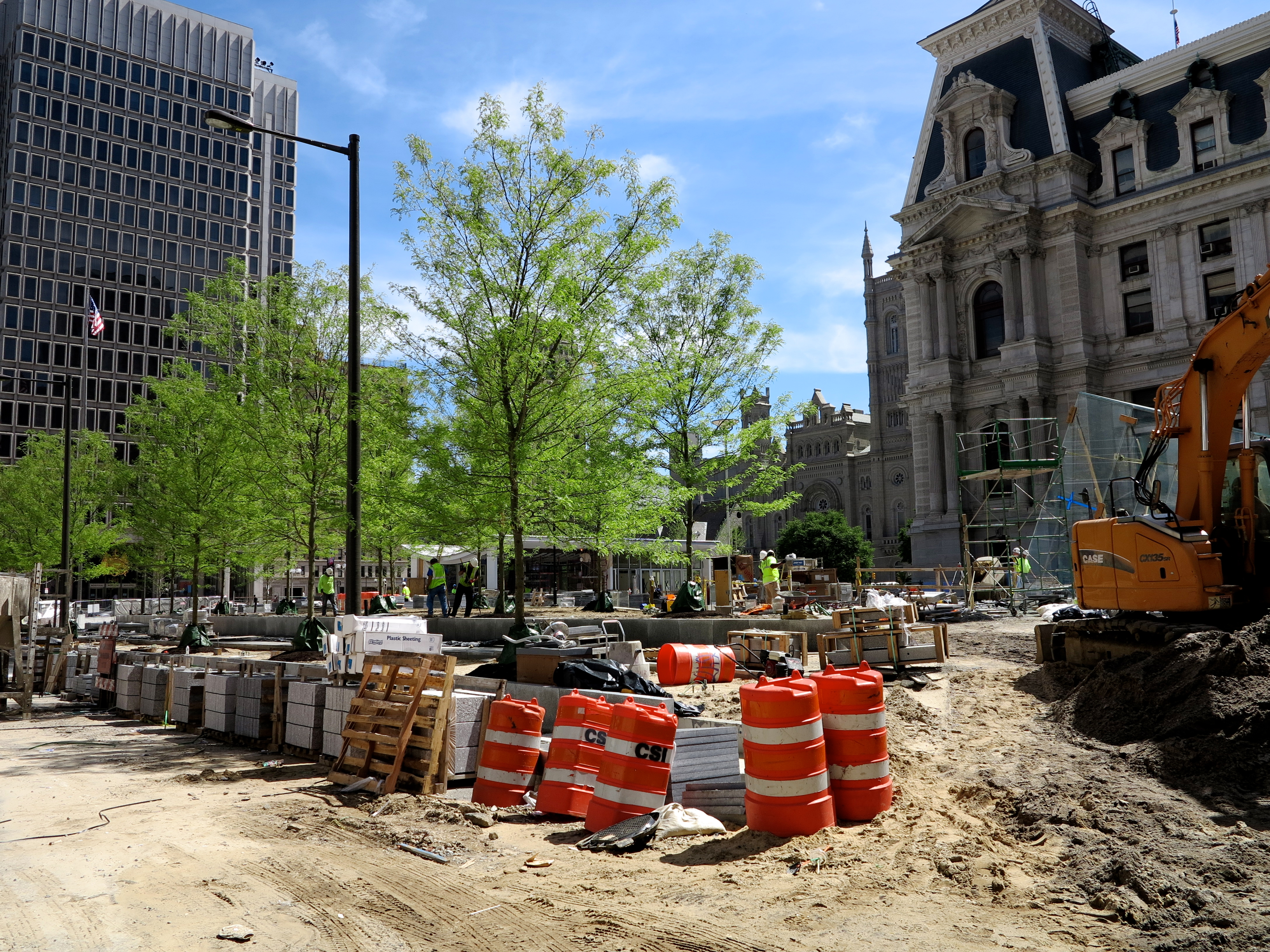Trees planted at Dilworth Plaza, June 2014