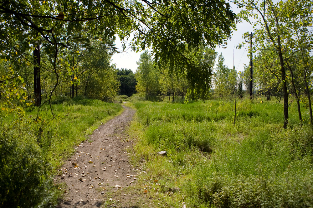 An access trail leads from Orthodox Street to the Delaware River through the former Coke Company site. | Bradley Maule