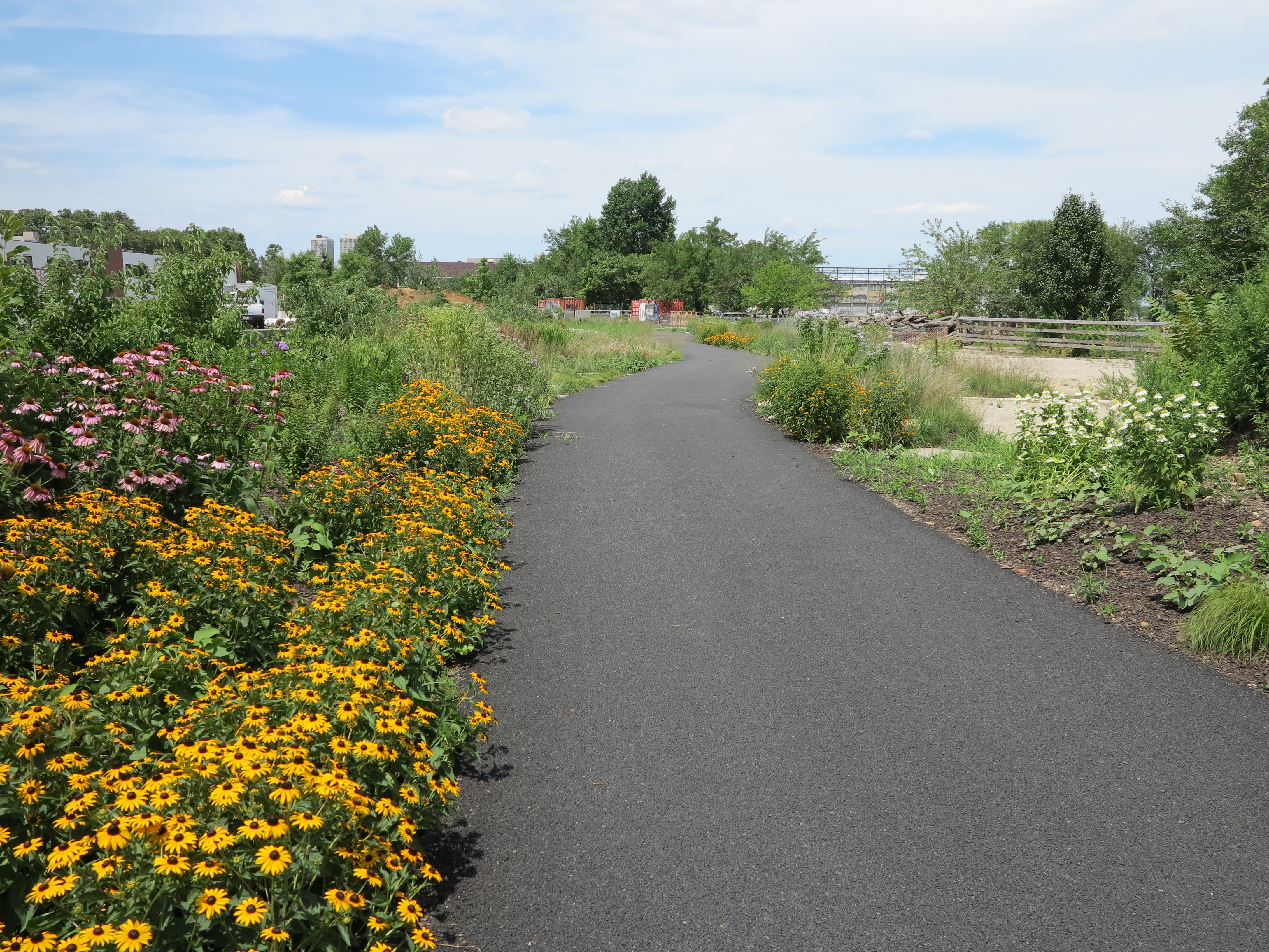 Delaware River Trail, July 2014