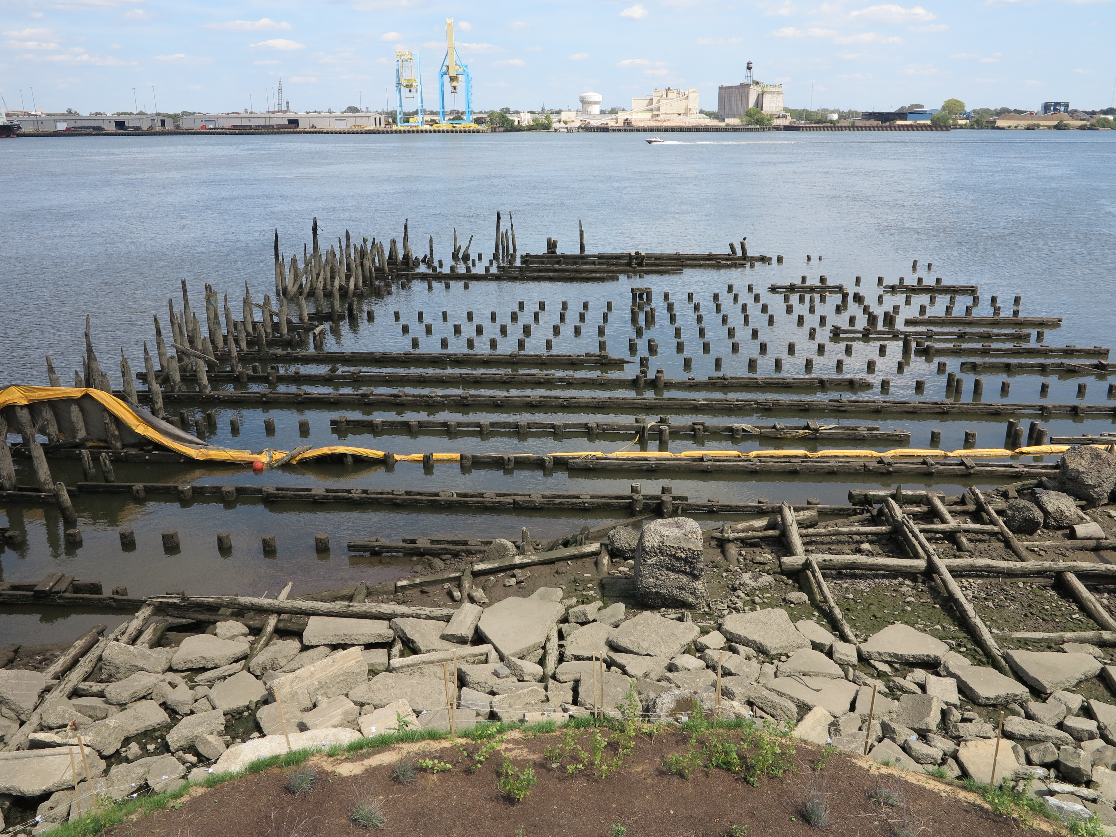 Old pilings provide wildlife habitat.