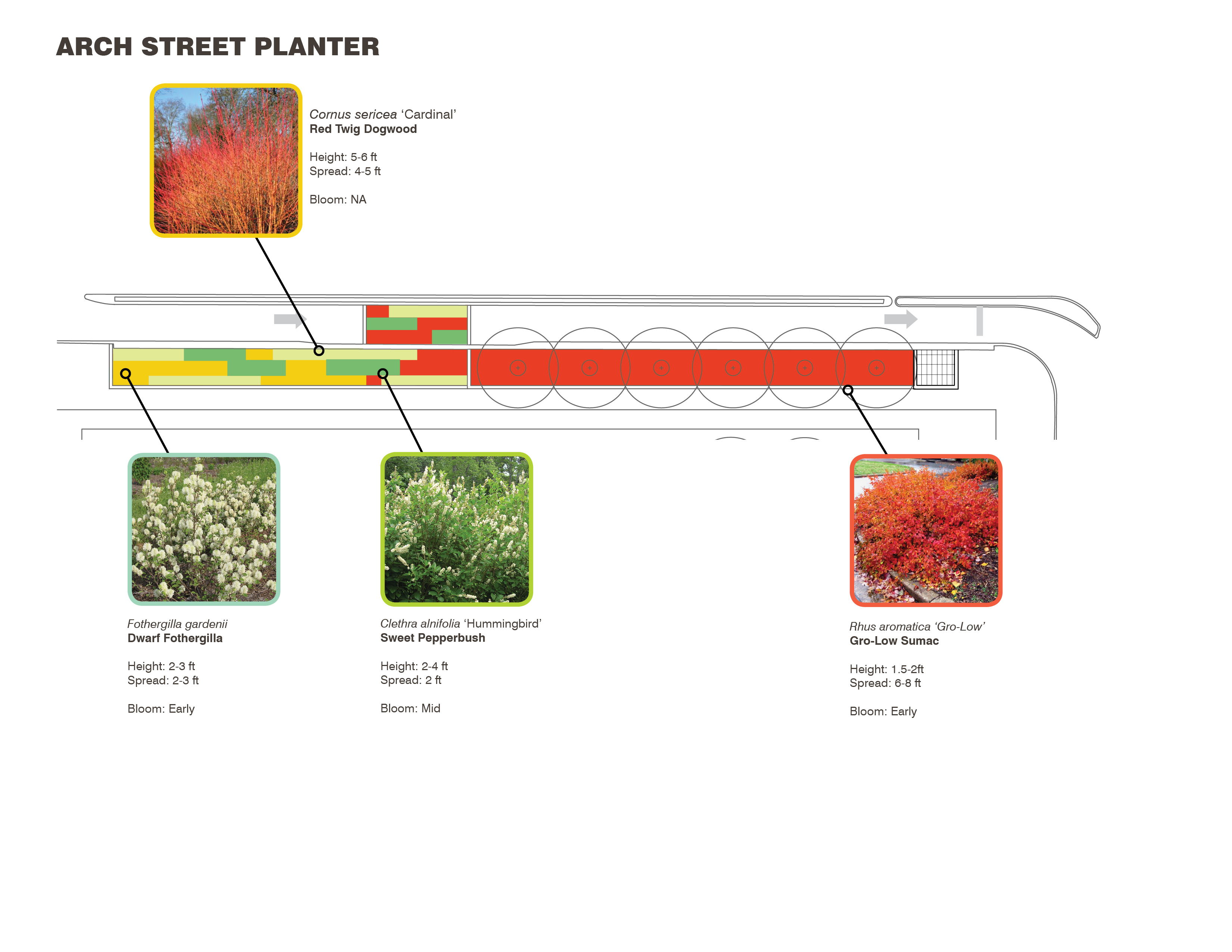 Arch Street planter plan, LOVE Park / JFK Plaza, October 2015 | Hargreaves