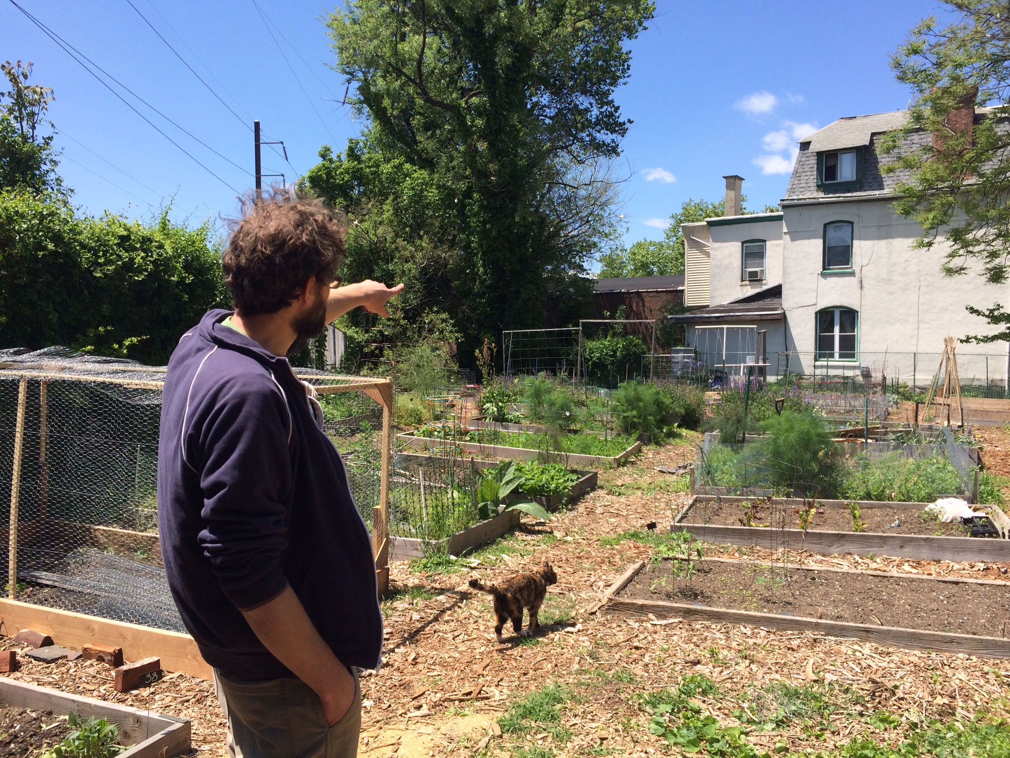 Gardener Phil Forsyth in St. Bernard Community Garden, May 2016 | Max Marin