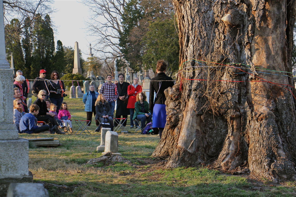 As the sun sets, a small group gathers to mourn the loss of the last English elm trees in The Woodlands. (Emma Lee/WHYY)