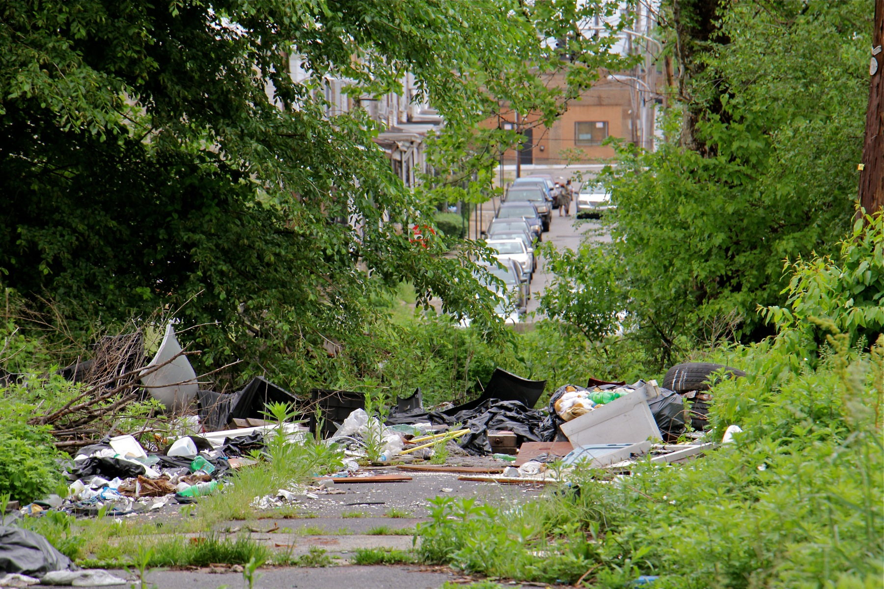 Dumping at the Logan Triangle takes place at the edge of a residential neighborhood.