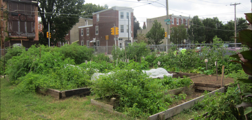 Emerald Street Urban Farm