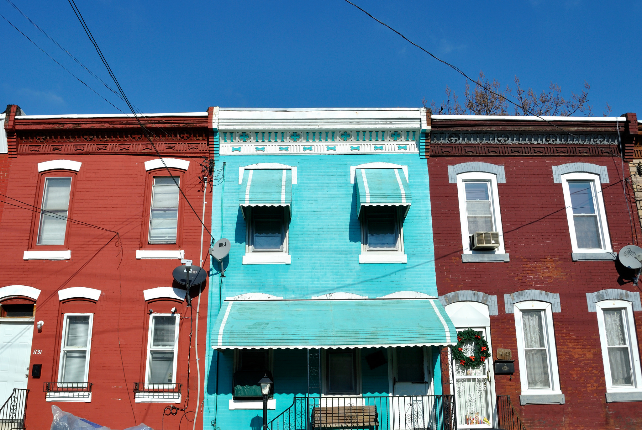 Miami Vice Blue, Fairhill | Julia Rowe, EOTS Flickr Group