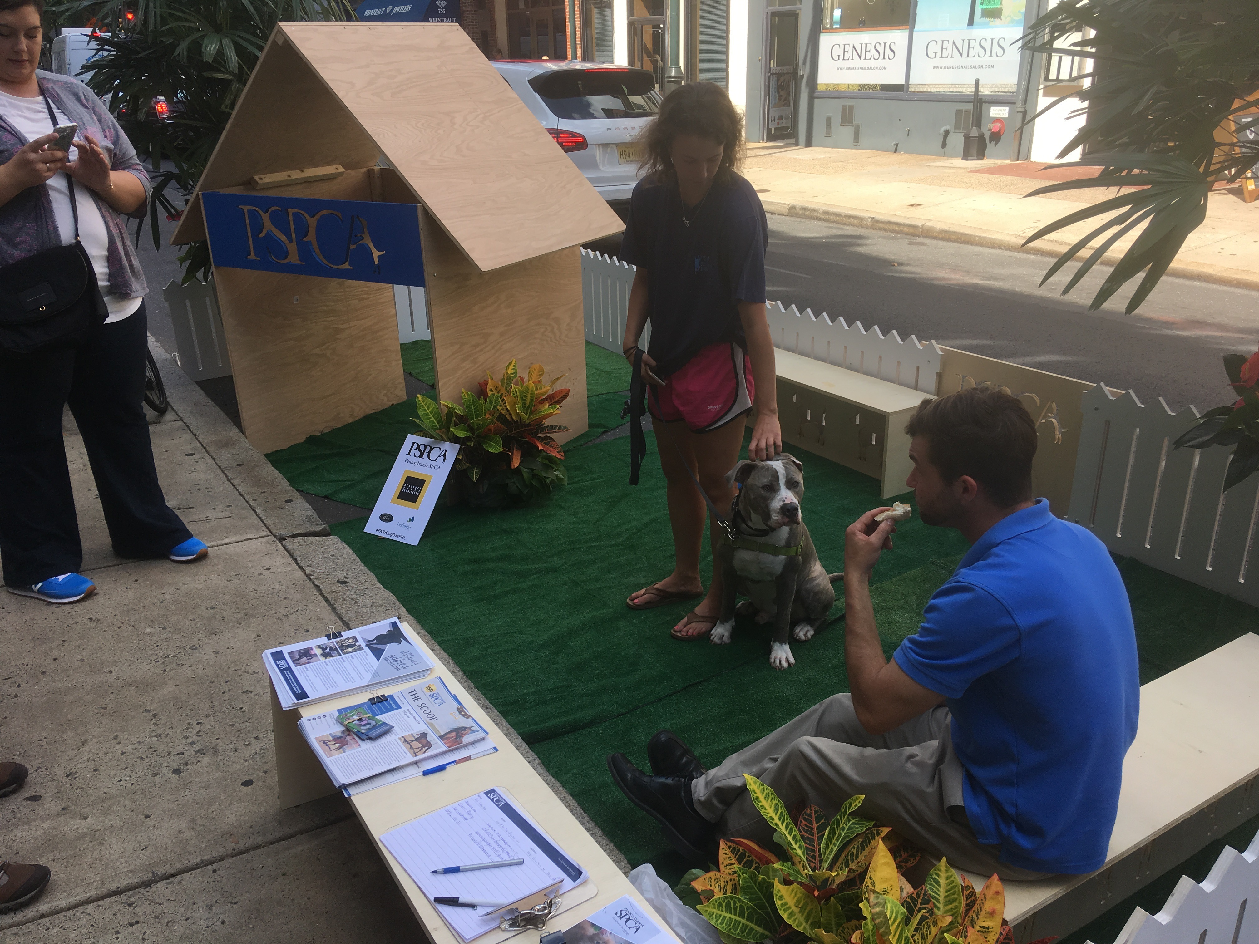 PSPCA won Park(ing) Day 2017 by showcasing puppies available for adoption. Pictured: Kojinu, a good boy who already has a human