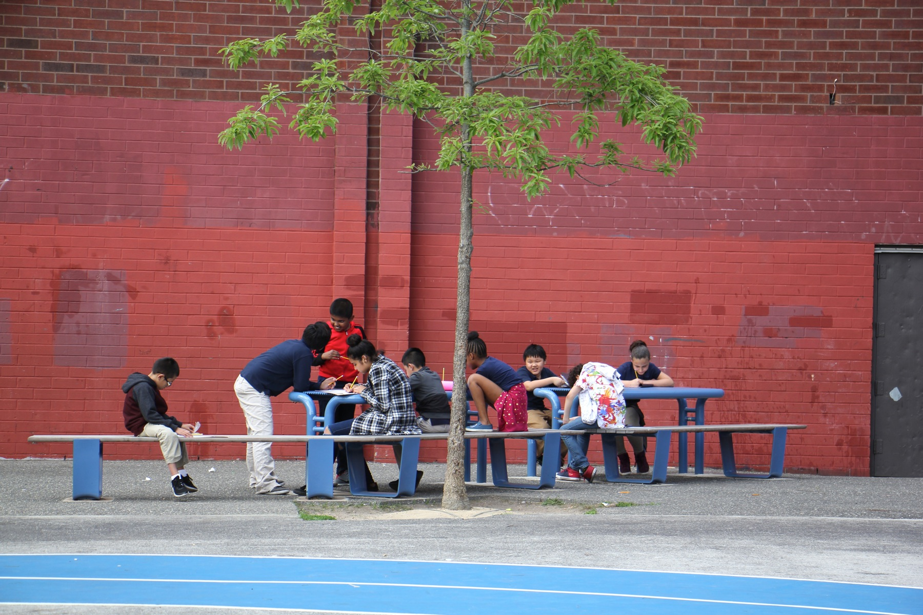 Trees shade outdoor learning spaces at Taggart School. (Emma Lee/WHYY)