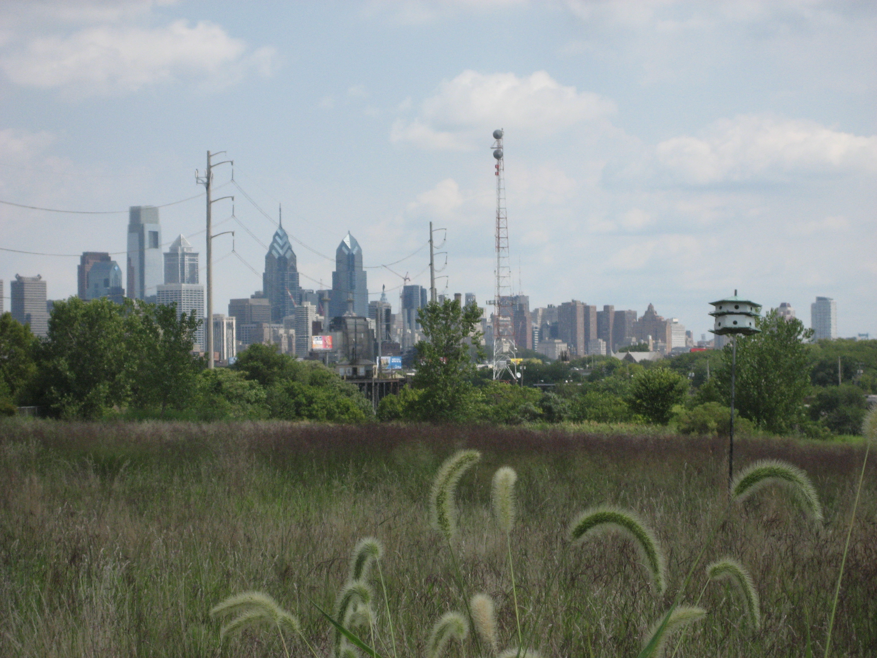 Cityscape from Bartram's Garden