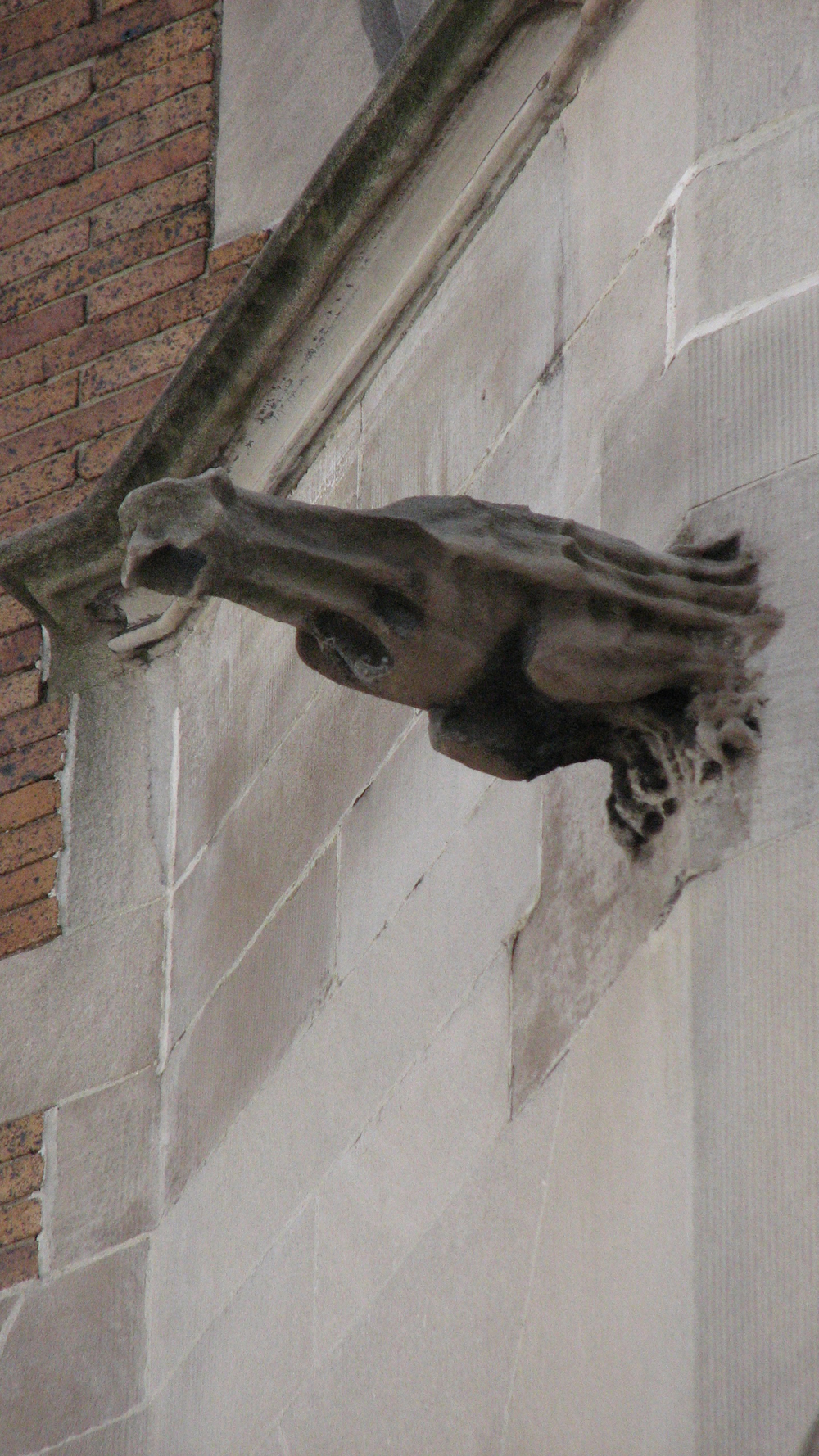 A French gargoyle leaps from the side of the house.