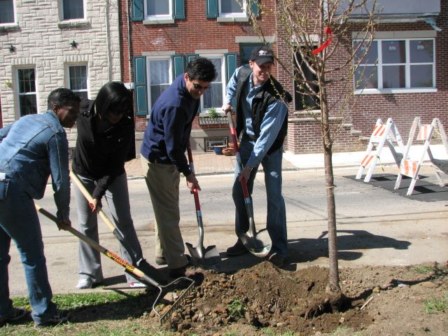 sites-planphilly-com-files-tree_planting-jpeg