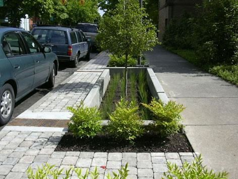 Curbside in Portland, Oregon. Portland's green stormwater management system was used as a case study in the SBN report