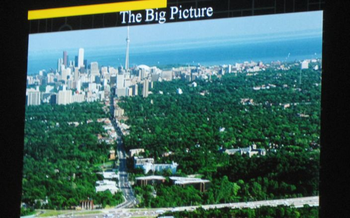 Big picture in Toronto