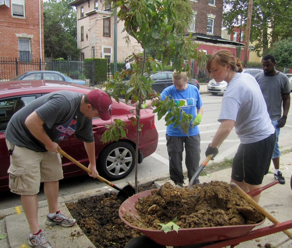 Zac Sivertsen, Sue Pringle, Megan Frink and Harum Ulmer pack dirt around one of the seven trees planted on Sept. 10.