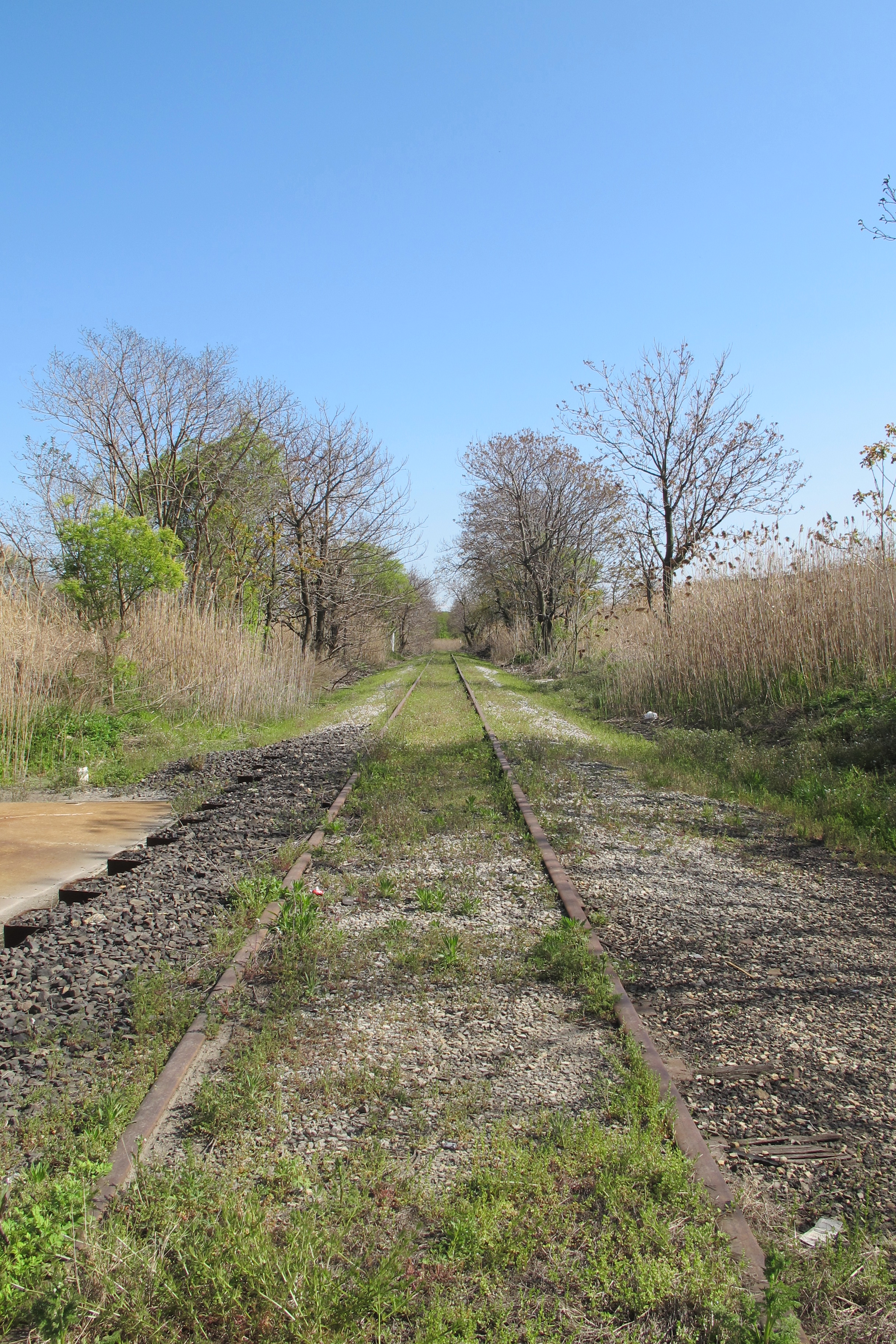 The 60th Street Rail Corridor is an abandoned right of way that could be creatively reused.