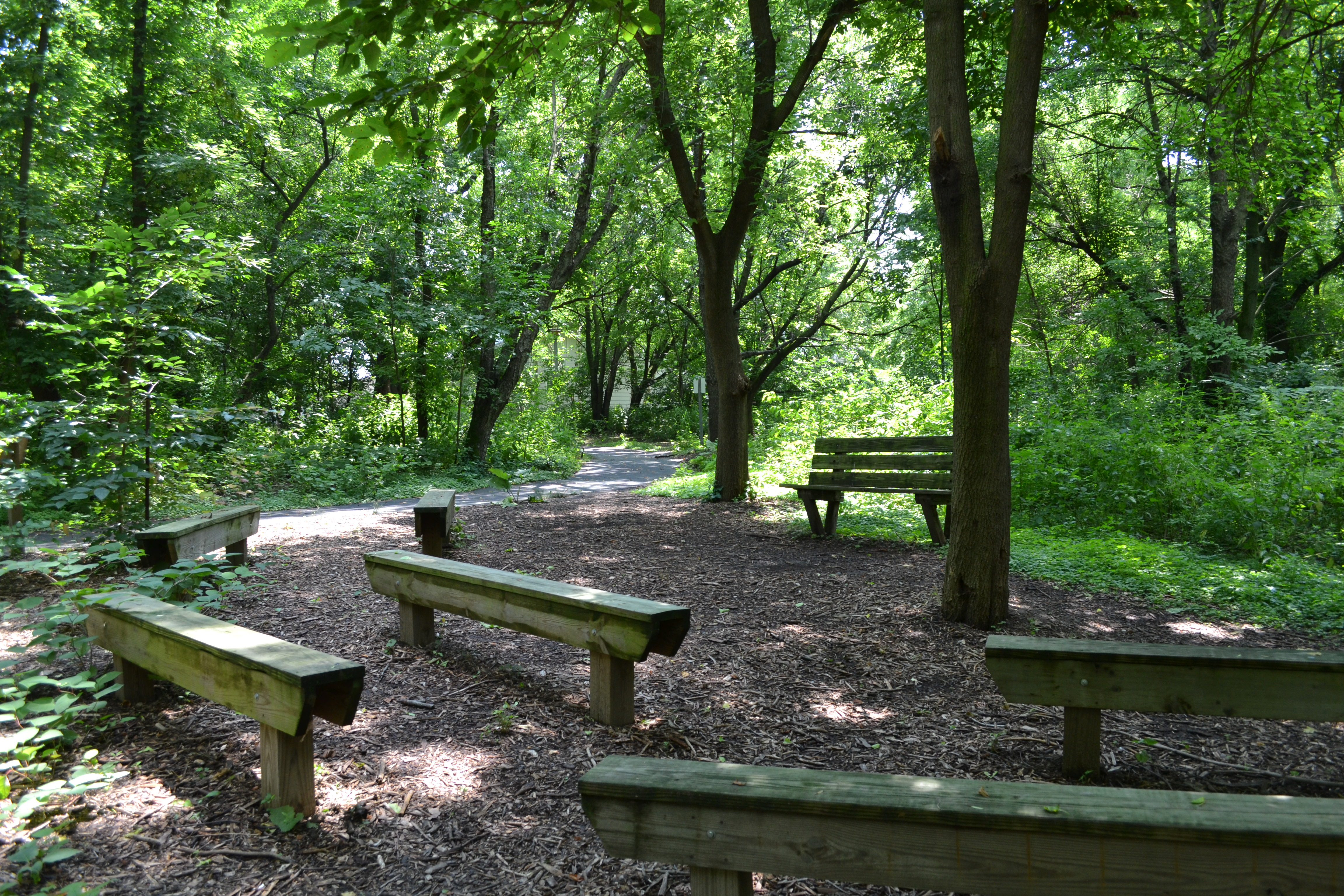 A small amphitheater offers an outdoor classroom and learning space