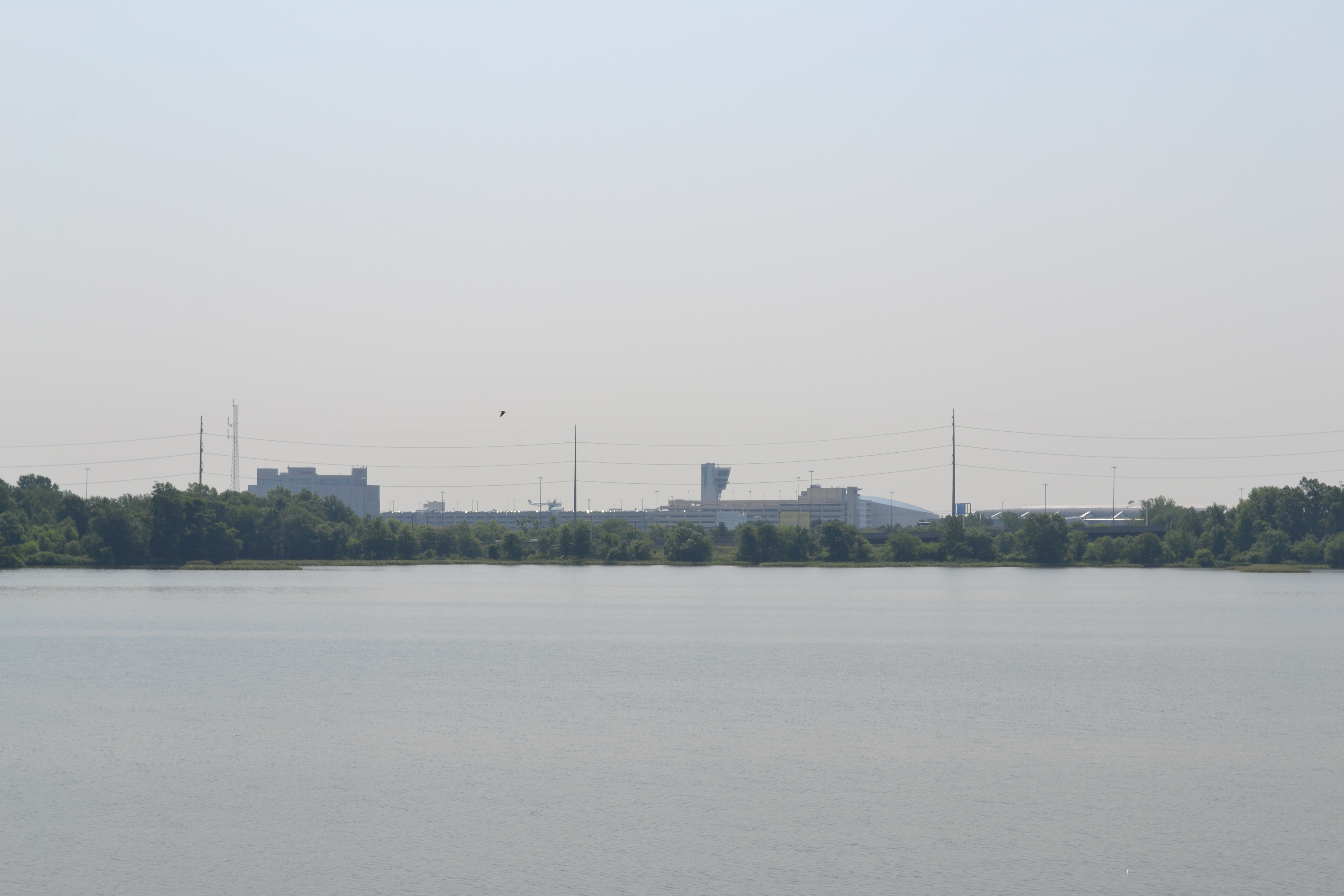 At one end of impoundment the Philadelphia International Airport's buildings stand above the tree line