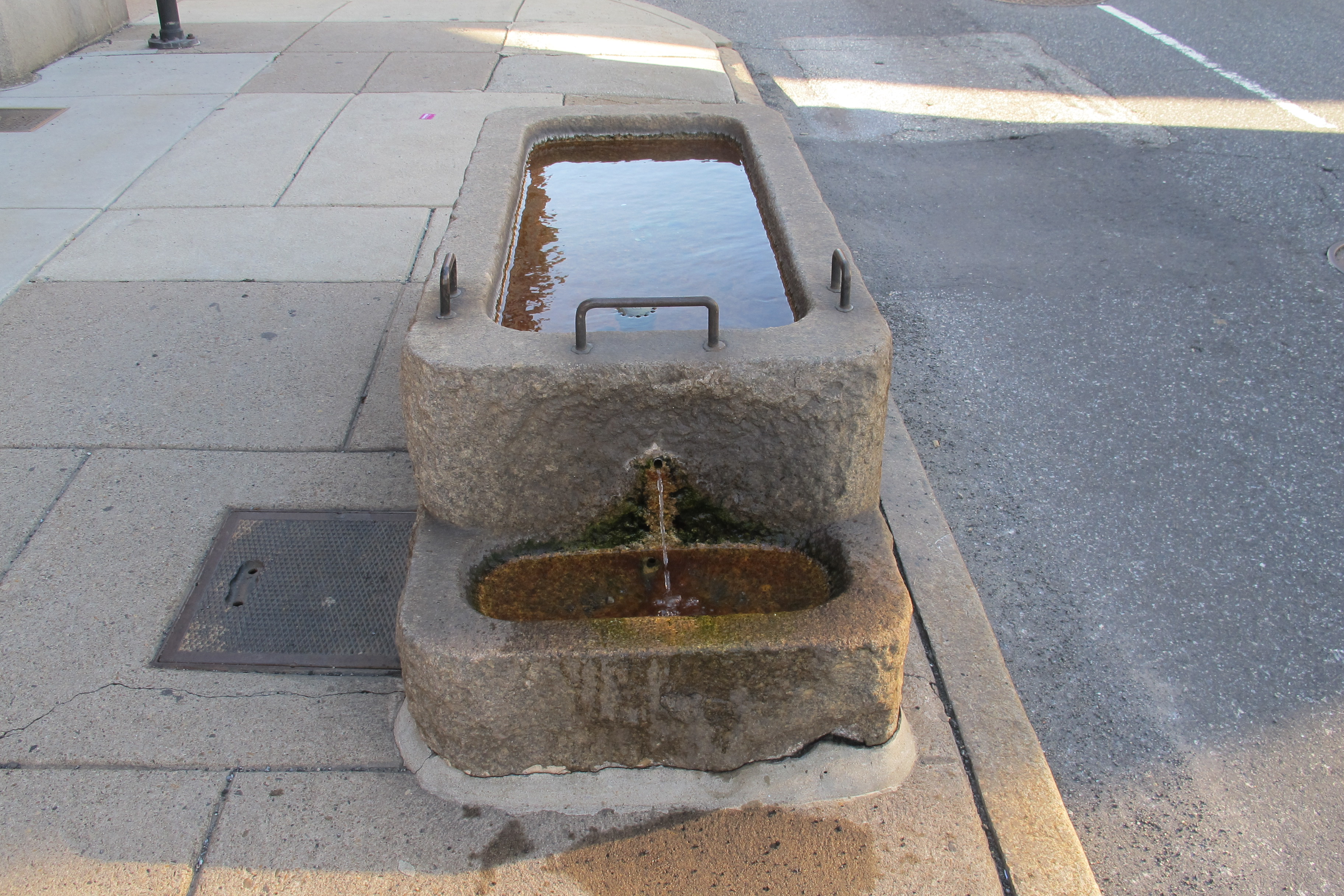 Bi-level troughs, like this one outside Fireman's Hall on North 2nd Street, allowed for smaller animals like dogs to drink from the fountains too.