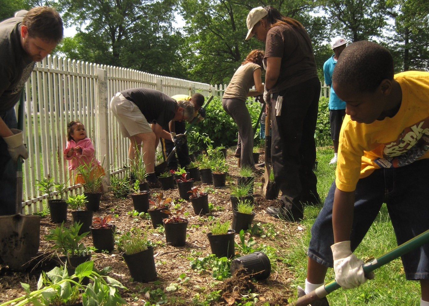 Volunteers in action at Woodford Orchard in Strawberry Mansion. | Philadelphia Orchard Project