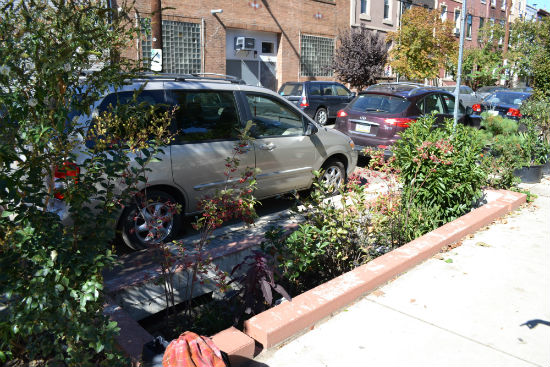 The stormwater planter at 13th and Wharton streets is the first of its kind in Philadelphia