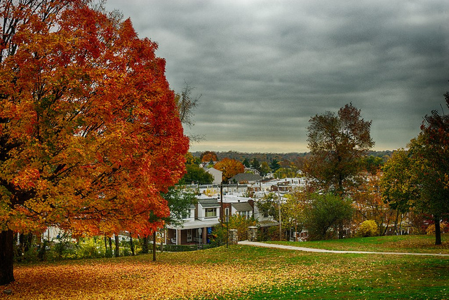 Gorgas Park, Roxborough on October 26 | Gary Reed, Eyes on the Street Flickr group
