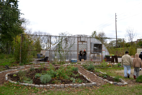 Bartram's Farm grew approximately 60,000 transplants in its greenhouse for the PHS City Harvest Program.