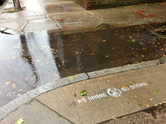 "First place winner Lauren Wolf snapped a photo of flooded Locust and Hutchinson streets where graffiti reads ""No Diving."" 