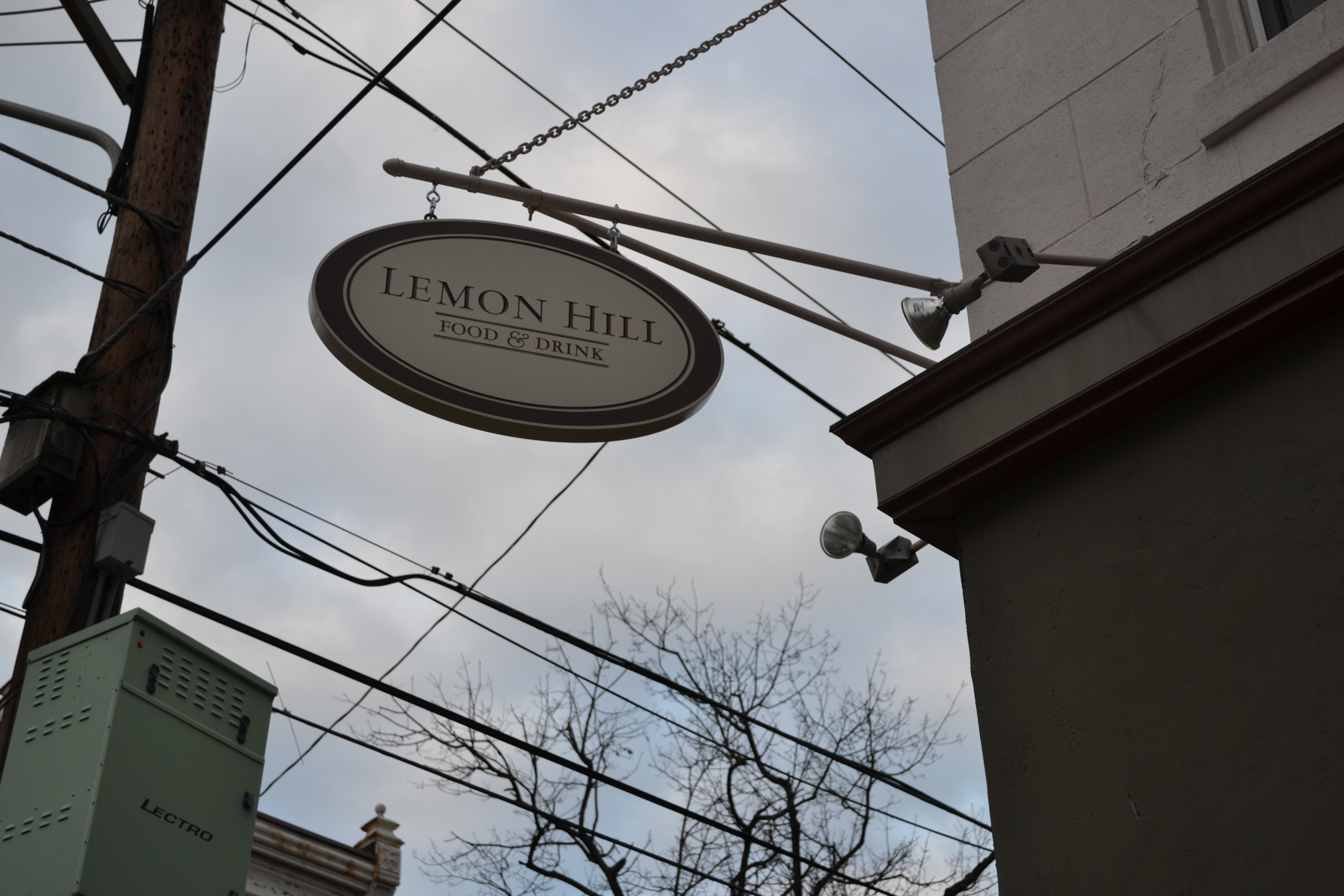 Lemon Hill, 25th and Aspen streets