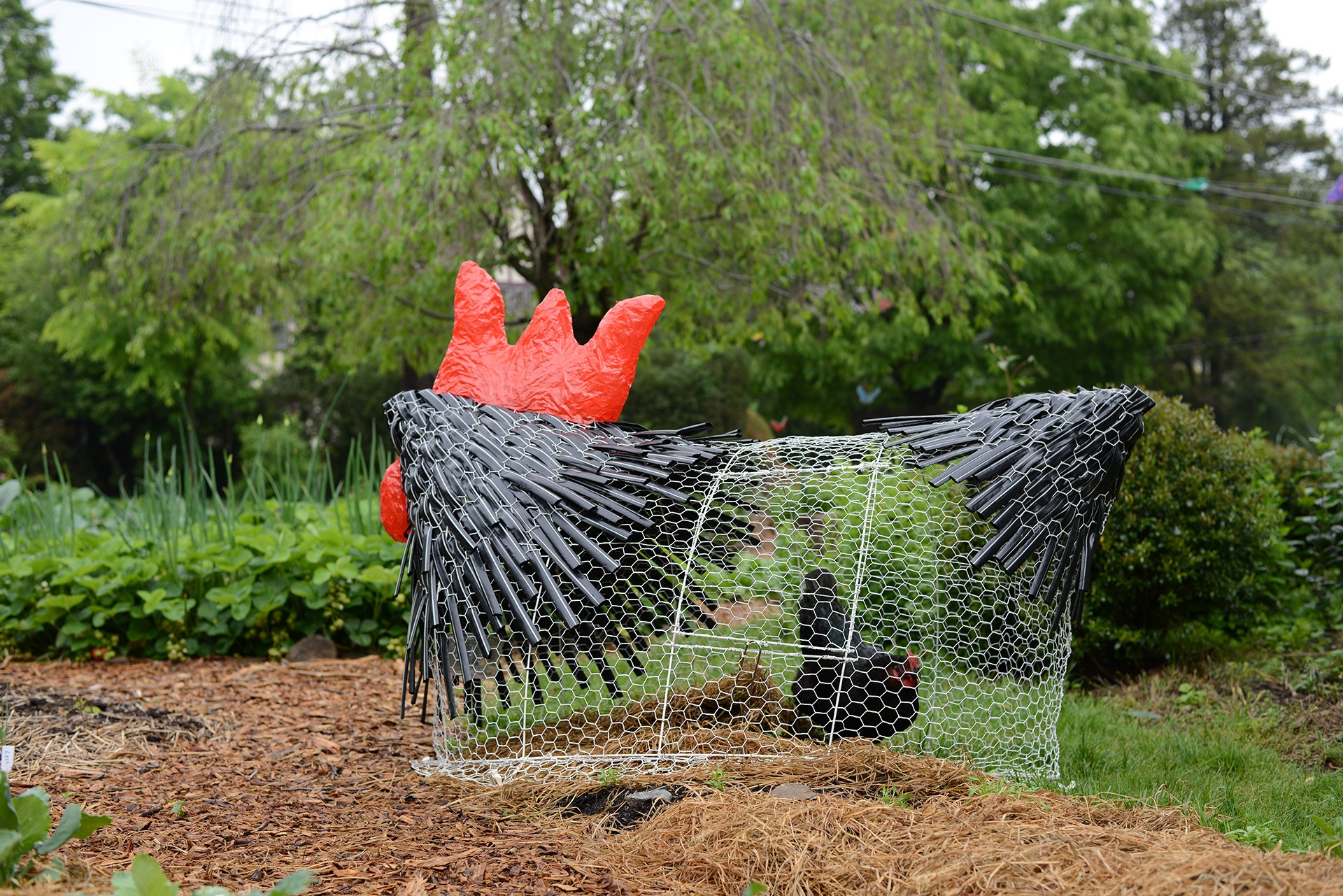 Meei-Ling Ng's The Chicken Tractor sculpture, Photo provided by Fairmount CDC