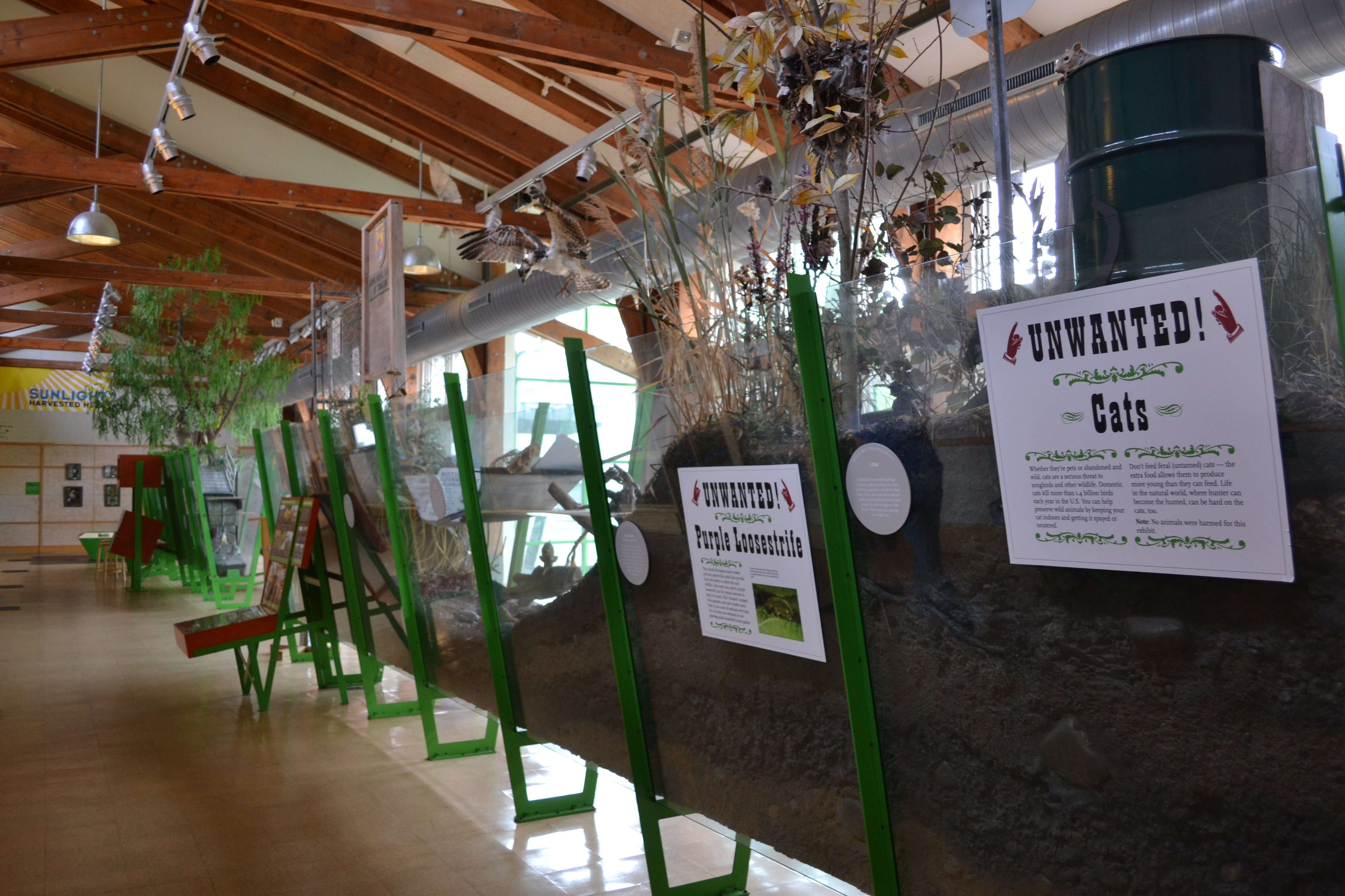 The Cusano Environmental Education Center showcases cross sections of the different habitats