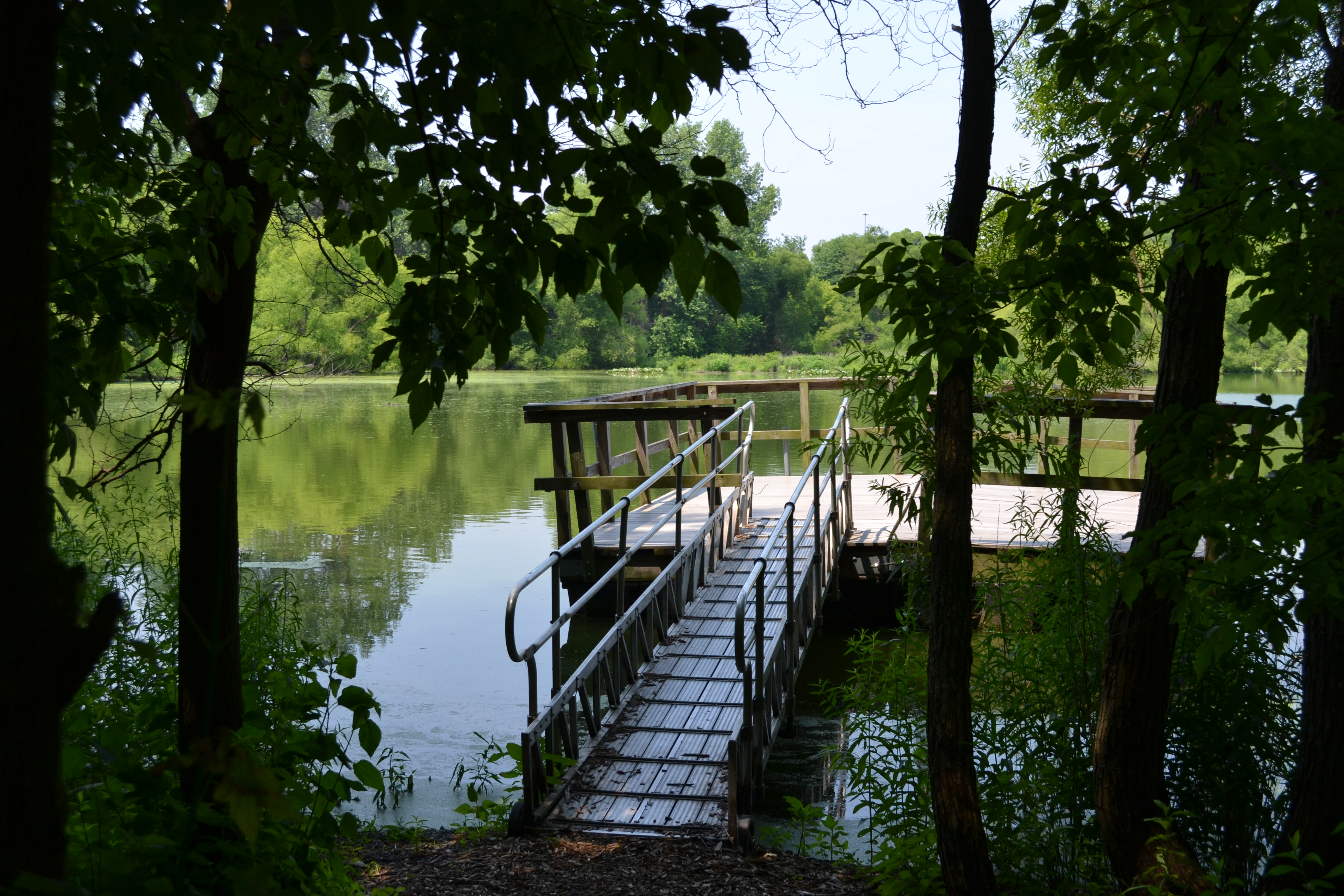 There are small, quiet ponds with access for fishing and/or bird watching