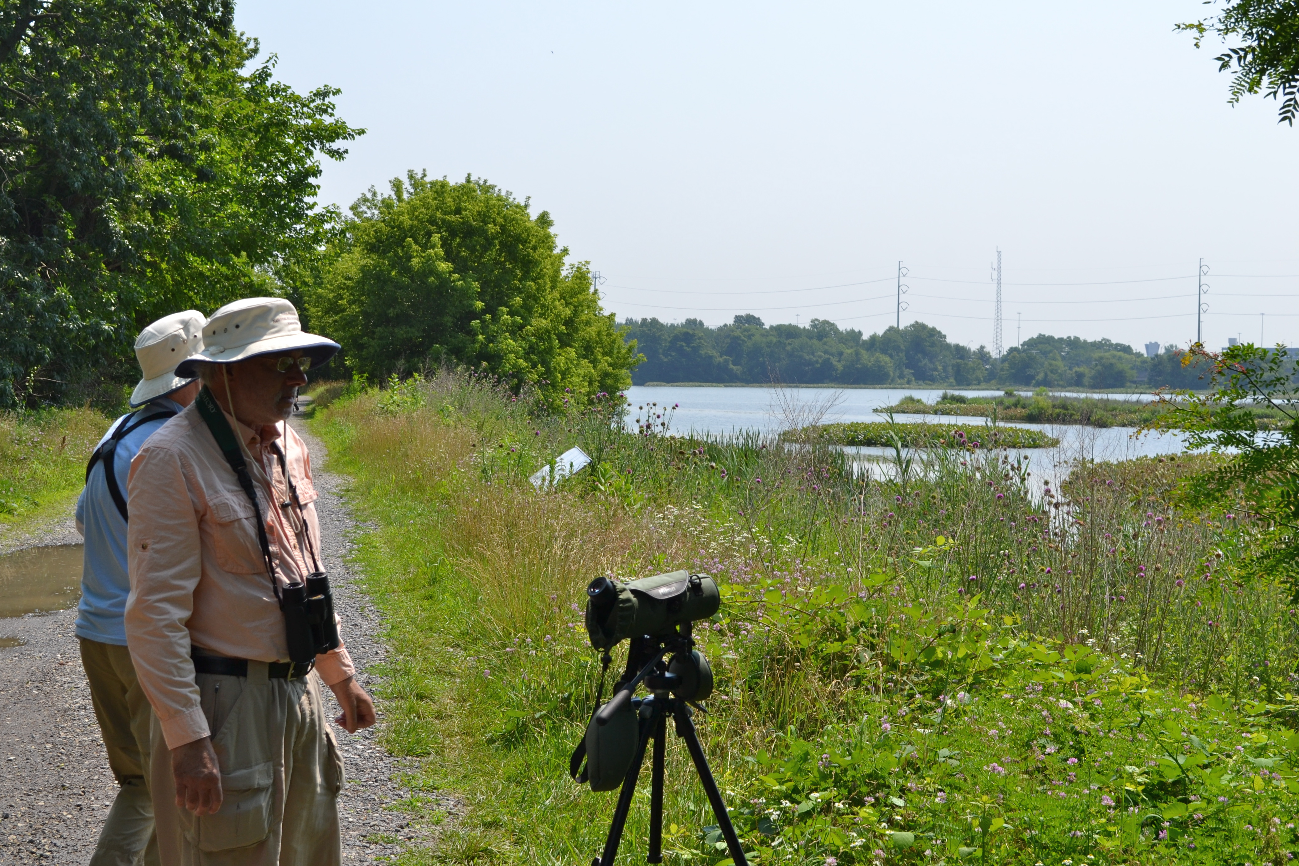 Volunteers keep an eye on eagle activity and point the birds and their nest out to passersby