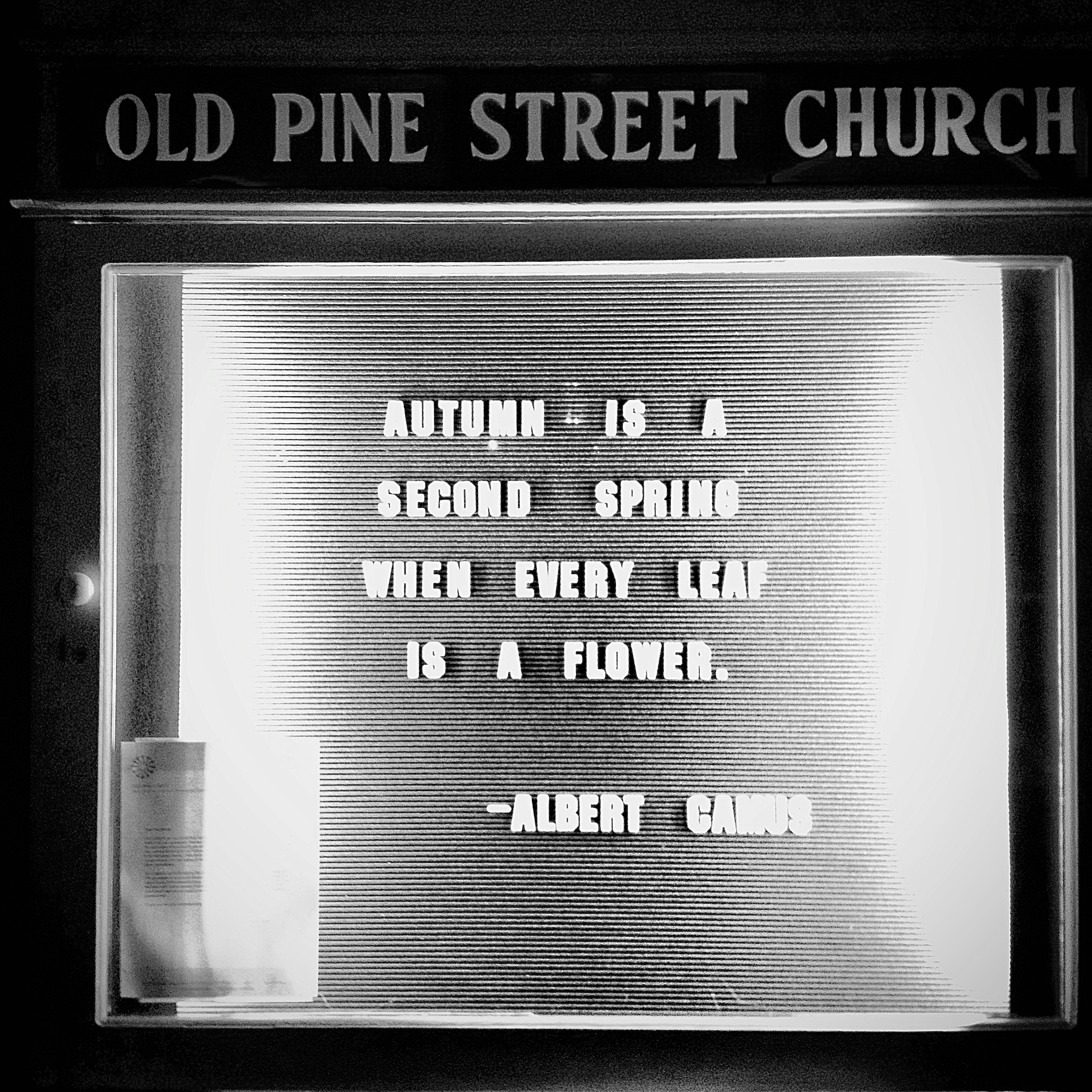 Autumn is a second spring when every leaf is a flower. - Albert Camus, Old Pine Street Church, October 2013