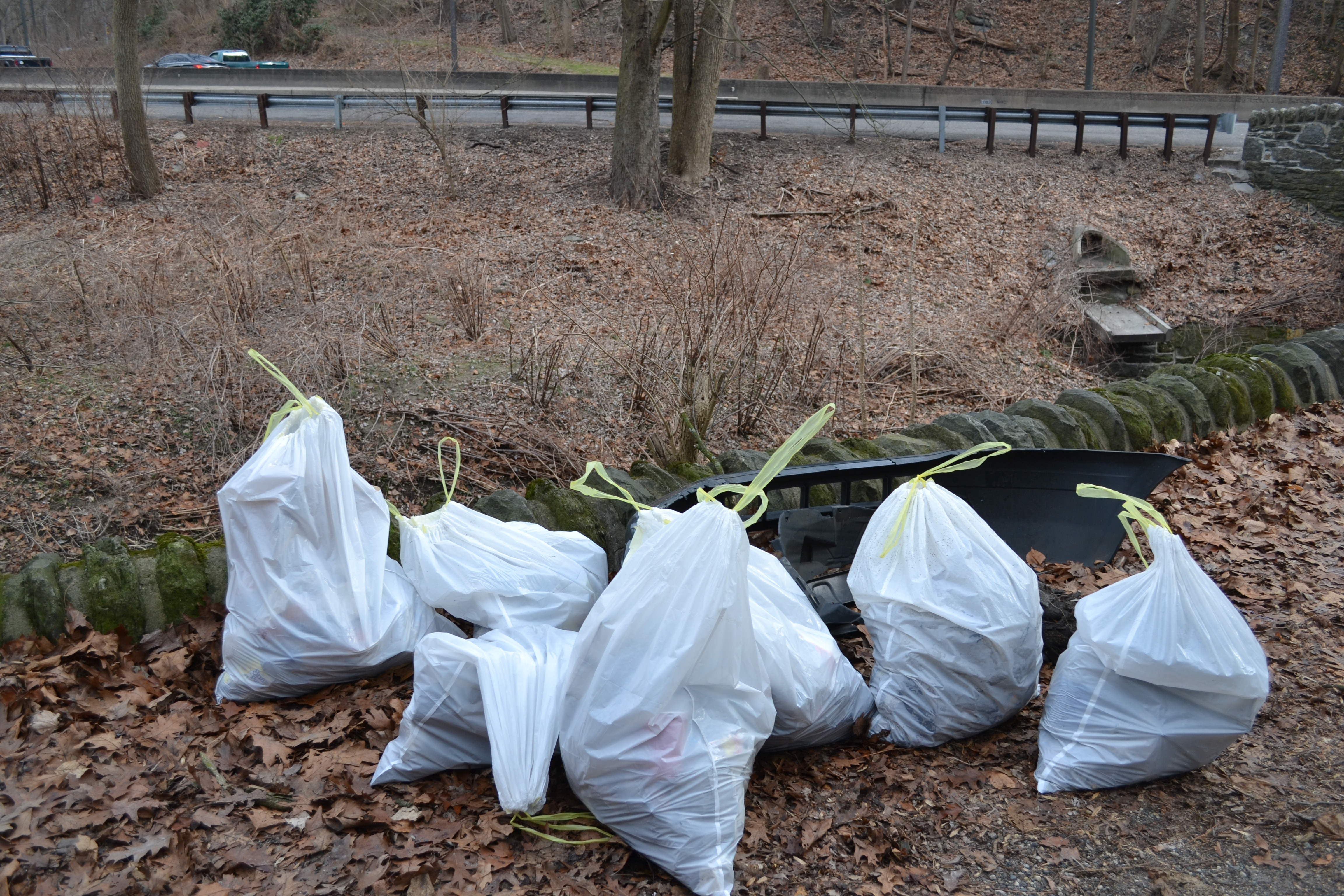 Friends of Wissahickon cleanup