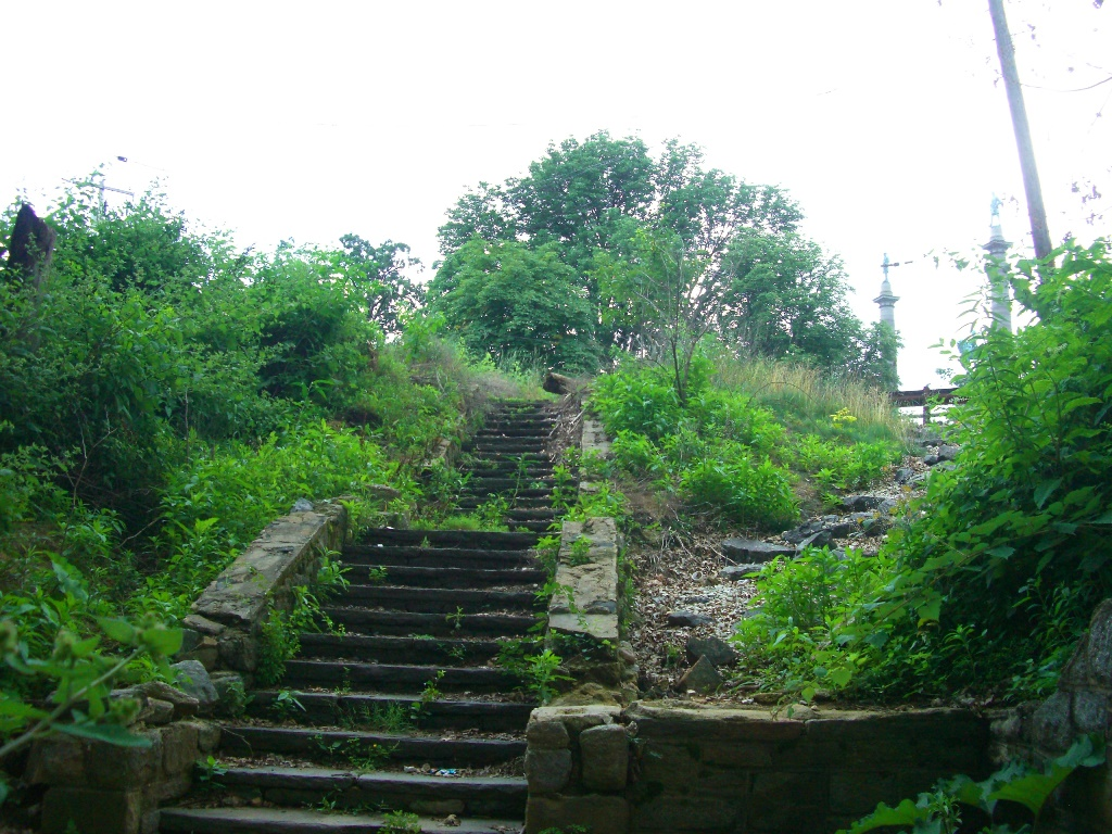 Steps that used to provide park access, but are overgrown