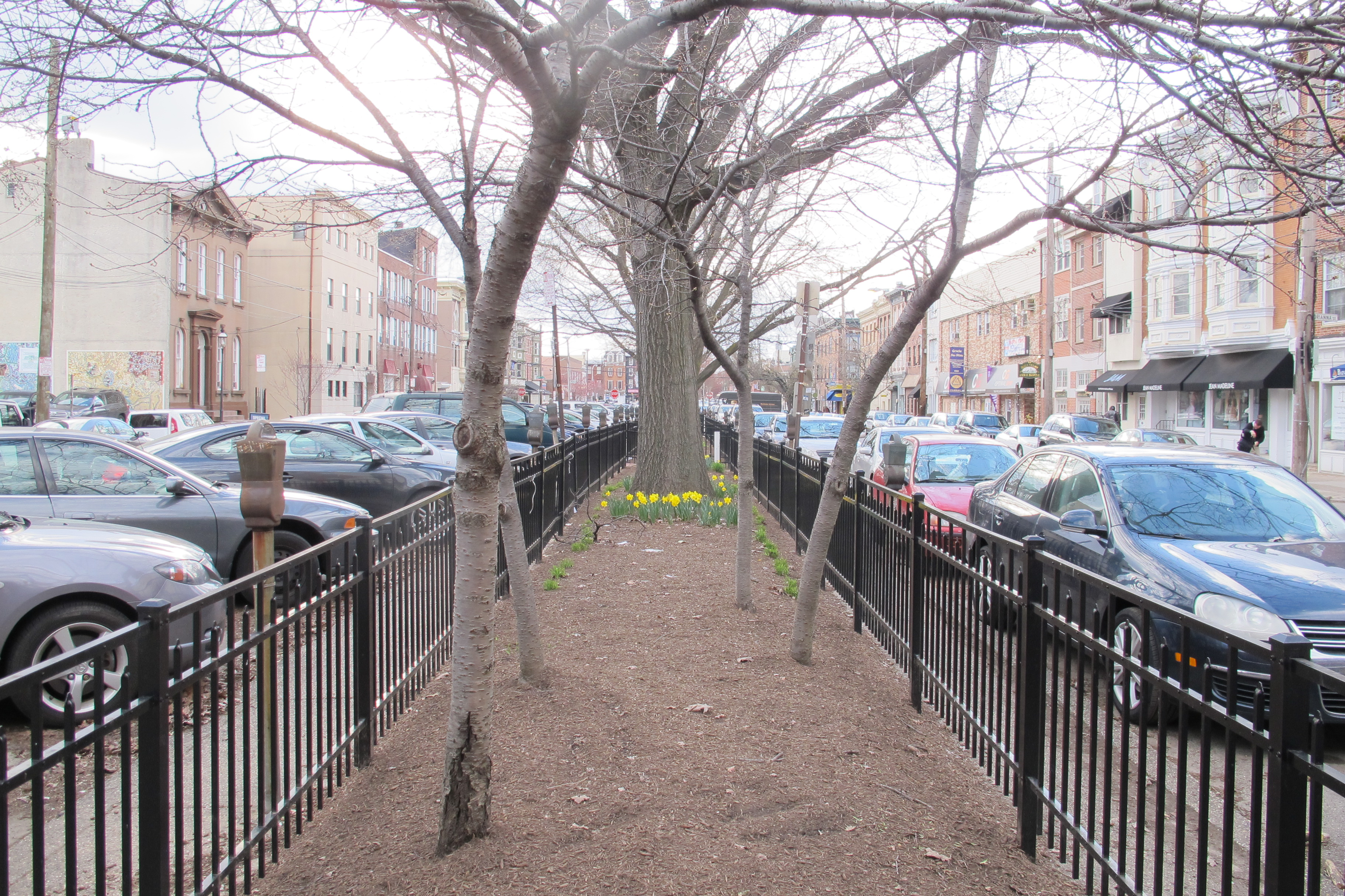 Parking or Park?: Looking down the center of Bainbridge Green in early spring 2013.