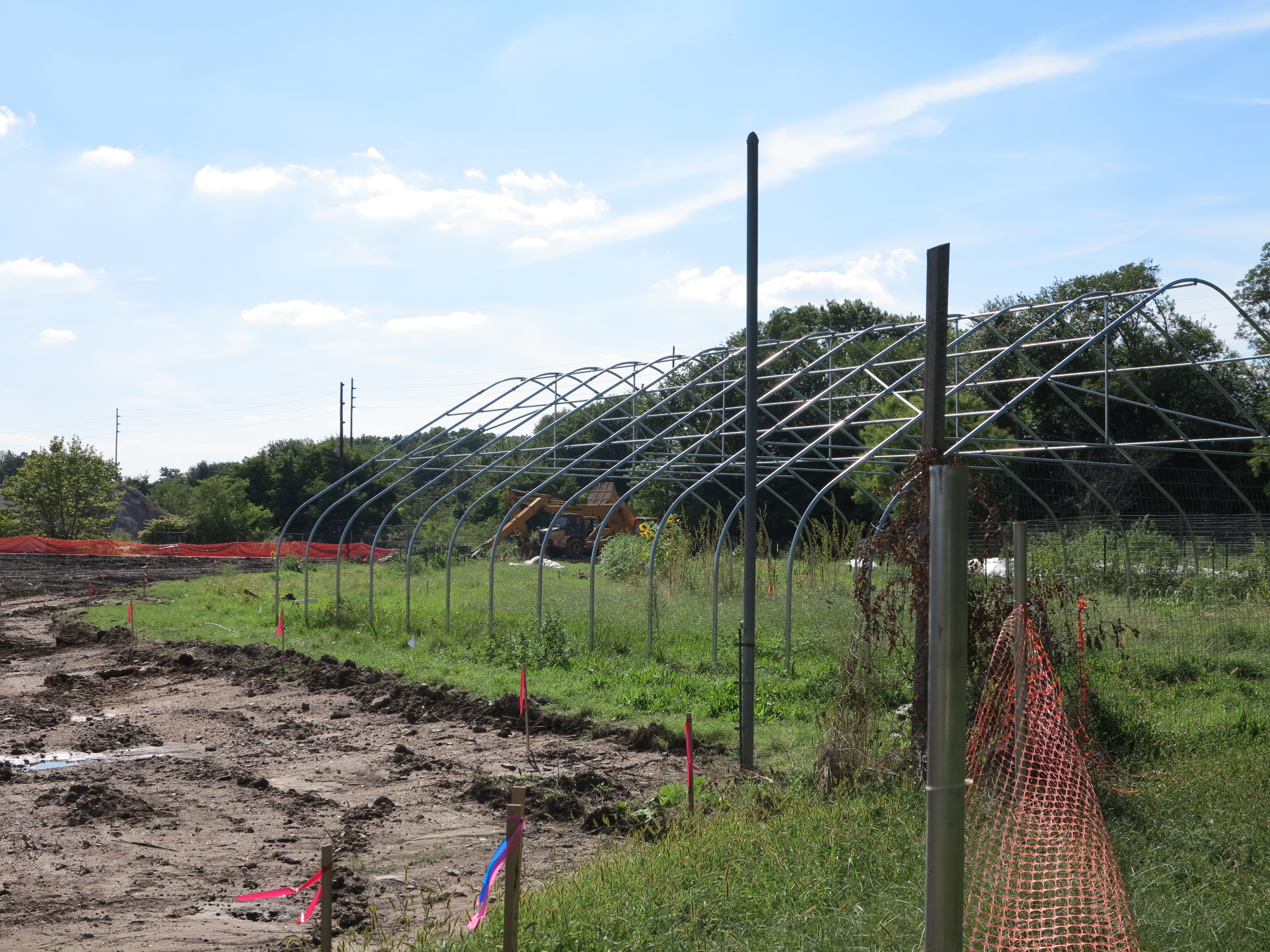 The outermost wetlands planting zone will contain trees and shrubs with edible parts to complement the adjacent community farm